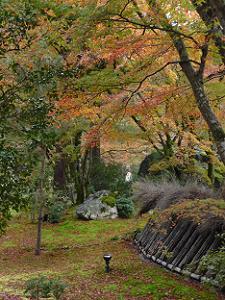 豊丸垣と紅葉