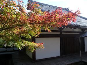 仏殿付近の紅葉