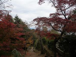 三帝陵から眺める紅葉
