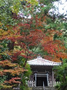 法然上人廟と紅葉