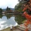 大沢池の紅葉・2015年