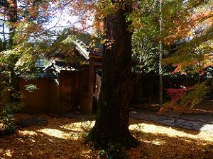 山門付近の紅葉