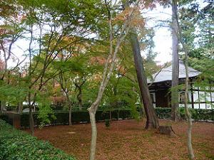 萬霊堂付近の紅葉
