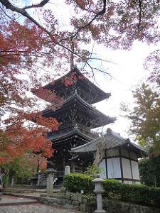参道から見上げる三重塔