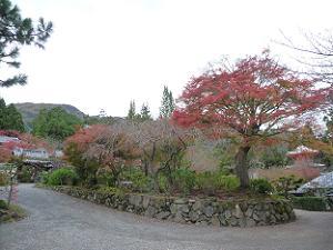 山門の外の紅葉