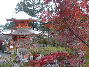 遍照塔と紅葉