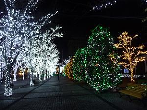 光り輝く京セラ本社の敷地