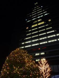 本社壁面のクリスマスツリー