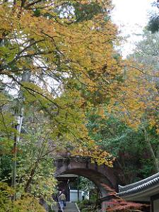 水路各付近の紅葉