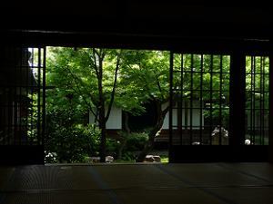 書院から眺める潮音庭