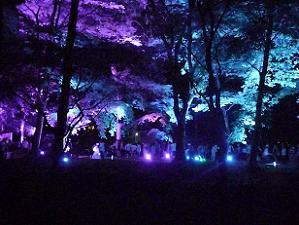 糺の森のライトアップ