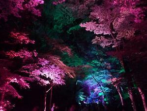 紫色と青色の空間