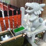 白峯神宮の潜龍社にいる笑い龍