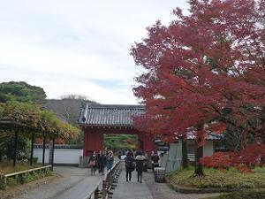 表門付近の紅葉