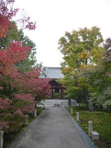 鐘楼と紅葉