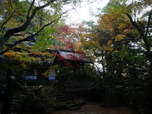 収蔵庫の前から見る紅葉風景