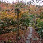 京都の紅葉狩りコース-檀林寺、滝口寺、祇王寺編