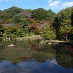 京都の紅葉狩りコース-法金剛院、退蔵院、大法院編