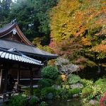 京都の紅葉狩りコース-寂光院、宝泉院、三千院、実光院、勝林院、来迎院編