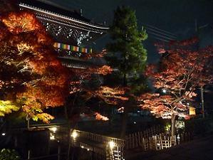 ライトアップされた山門と紅葉