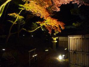 茶室近くの紅葉