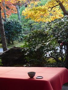 茶席と紅葉