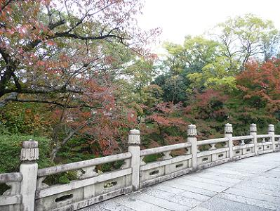 円通橋の紅葉
