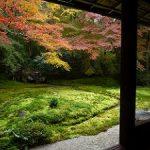 京都の紅葉狩りコース-瑠璃光院、八瀬もみじの小径、蓮華寺編