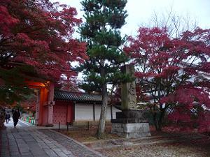 赤門付近の紅葉