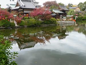 池に映る社殿と紅葉