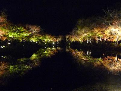 瓢箪池に映る紅葉