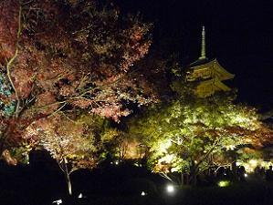 暗闇に浮かび上がる五重塔と紅葉