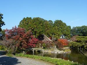 咲耶池周囲の紅葉