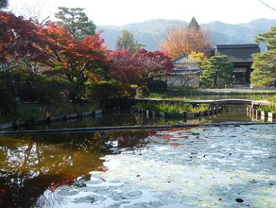 咲耶池と社殿と紅葉