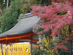 美御前社の屋根と紅葉