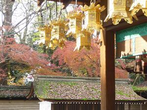 舞殿の装飾と紅葉