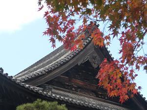 法堂の屋根と紅葉