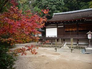 拝殿と紅葉