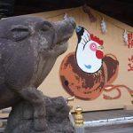 元日の護王神社に初詣に行ったら本物のイノシシがいた・2017年