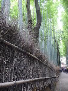 竹の枝の囲い
