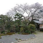 佐々木道誉が勝持寺で催した盛大な花見