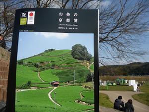 お茶の京都博のガイドブック
