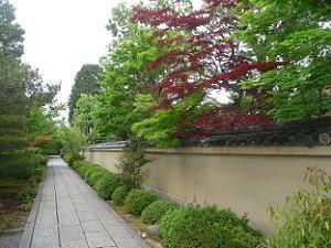 芳春院の参道