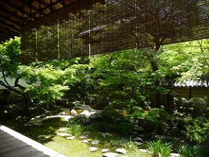 釈迦堂前の庭園