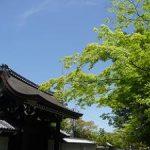 南禅寺の新緑と青空・2017年