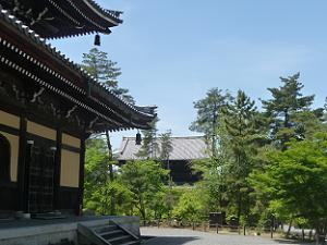 法堂と三門
