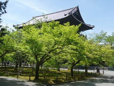 新緑と三門の屋根