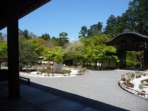 本堂から見る勅使門
