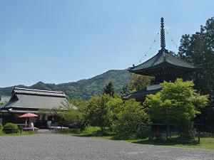 多宝塔越しに見る嵐山