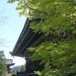 清凉寺の新緑とツツジ・2017年